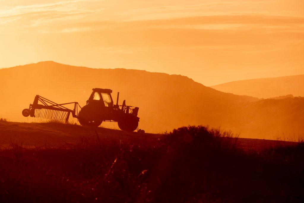 fondi FEASR l'agricoltura si rimette in moto