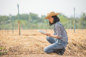 smart agricoltura